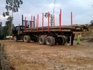 Multidrive Vehicles LTD - M8 Forestry Vehicle